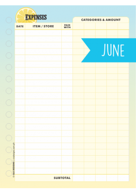 Expense Tracker Page - June 2018